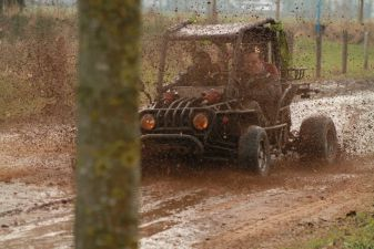 Buggy rijden in Brabants landschap