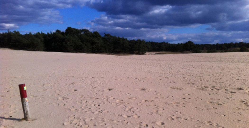 Kom tot rust op uitgestrekte zandvlaktes. Foto: Van Gogh Wandeling.