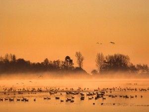 Jan Durkspolder bij zonsopkomst. Foto: Anton Huitema