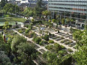 Foto: Hortus Botanicus Leiden © Duco de Vries