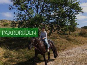 Paardentrainingscentrum Gert van den Hoorn