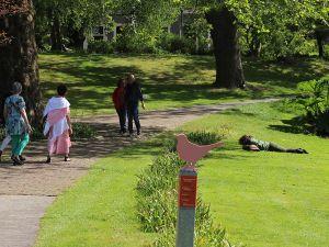 Vrolijk gekleurde bloemen en dieren wijzen de weg. Foto: DagjeWeg.NL