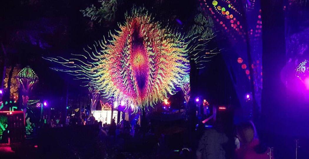 Stap in de betoverende sfeer van vijf kleinere festivals. Echte aanraders, zoals het magische bos van Into the Woods. Foto: Nikki Arendse