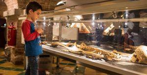 De 15 leukste musea  voor een dagje uit in Noord-Holland
