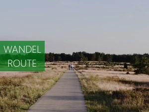 Westfriese wandelbelevenis plus high tea