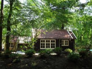 Vakantiehuis omgeven door bos
