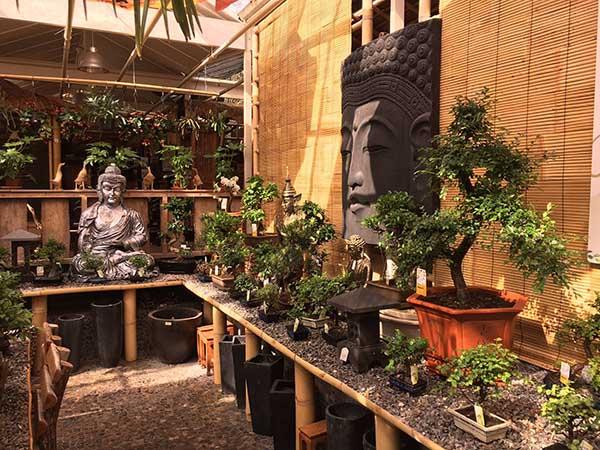 Foto: Exotisch tuincentrum De Evenaar.
