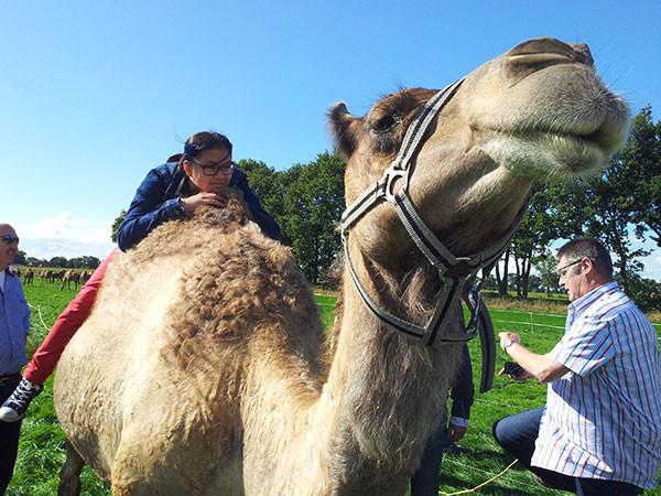 Wie durft er op een kameel te zitten?