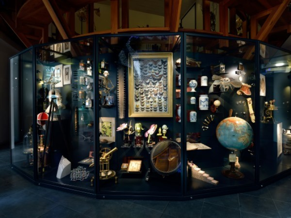 Bekijk het rariteitenkabinet. Foto: Rijksmuseum Boerhaave