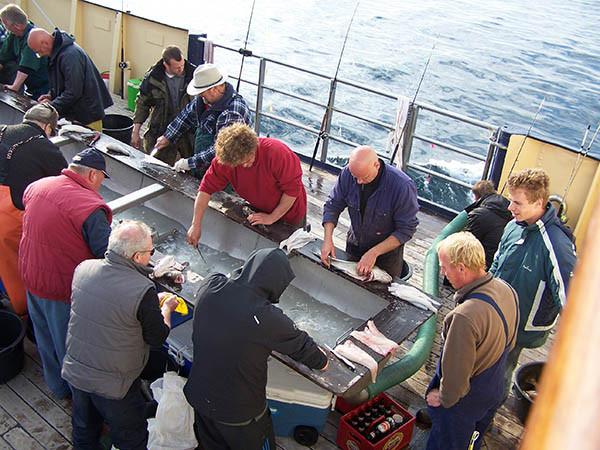 Optioneel: vis fileren aan boord