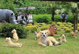 Relax tijdens de Safari Rit