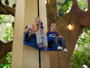 Hijs jezelf omhoog in de wensboom. Foto: Linberg Park.