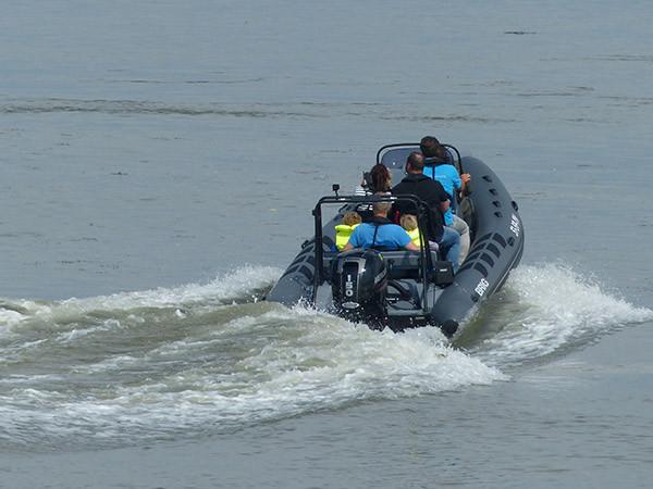 Verken de Westerschelde per boot. Foto: ScheldeSafari.