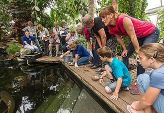 Wat zie je zwemmen in de tropische vijver? Foto: Klein Costa Rica.