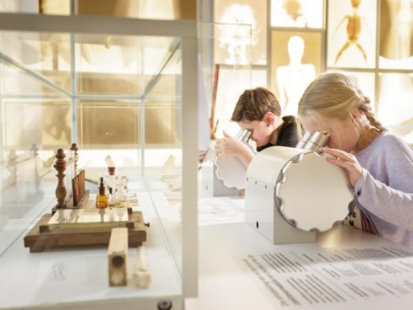 Wat ontdek jij onder de microscoop? Foto: Rijksmuseum Boerhaave