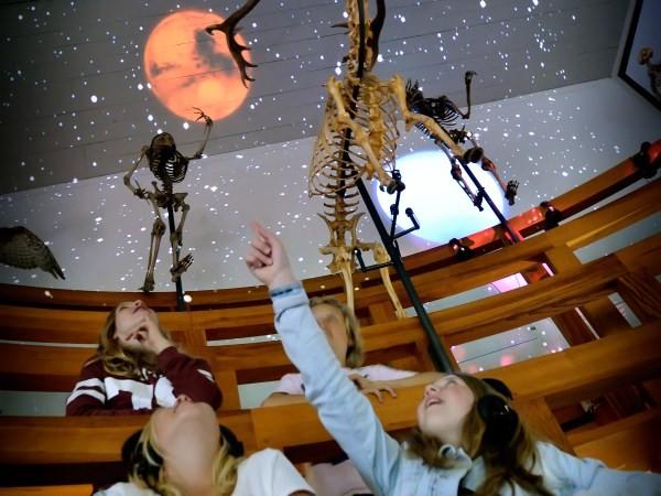 Vijf eeuwen wetenschapsgeschiedenis om je heen. Foto: Rijksmuseum Boerhaave